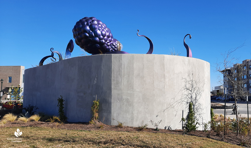 Ocho octopus Dixie Friend Gay sculpture Jessie Andrews Park back view Central Texas Gardener