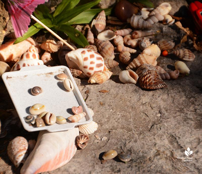 colorful seashells curbside trinket swap Jill Nokes garden Central Texas Gardener