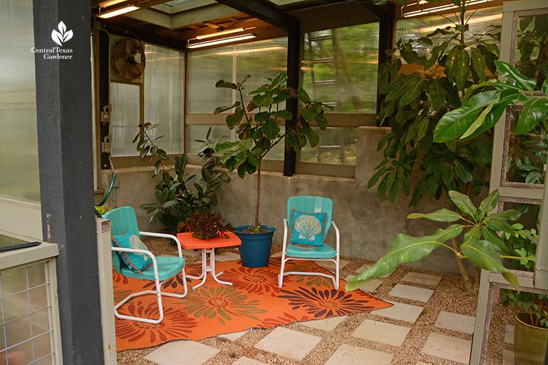 small greenhouse interior design cozy chairs Duhon Harper Central Texas Gardener