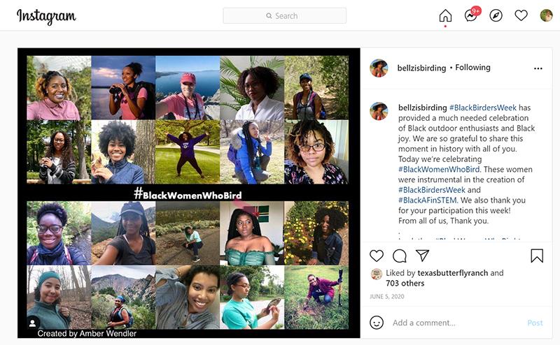 Bellzisbirding Black Women Who Bird Danielle Belleny instagram Central Texas Gardener