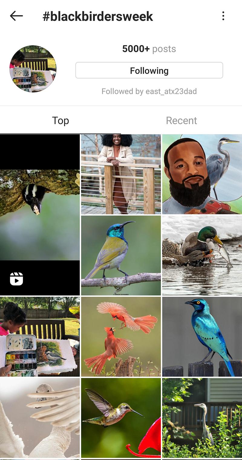 Black Birders Week Instagram Central Texas Gardener