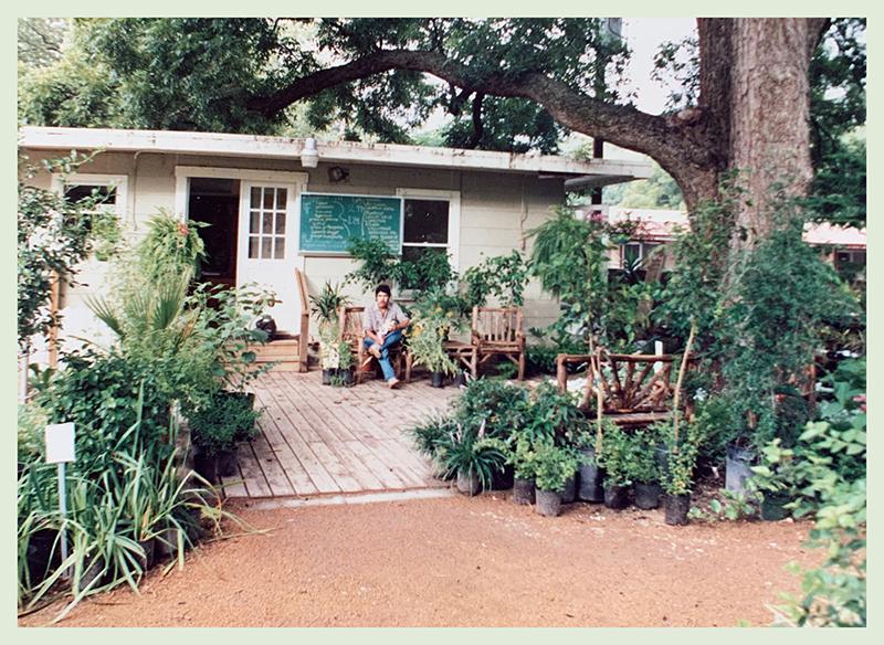 Barton Springs Nursery first location Sterzing Street 1986 photo by Bernardine and Conrad Bering