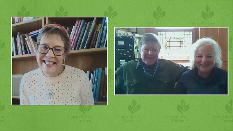 Linda Lehmusvirta and Conrad and Bernardine Bering Barton Springs Nursery Zoom interview
