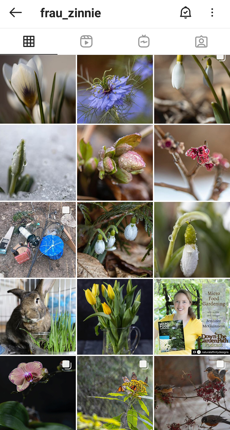 Author blogger Frau Zinnie Jen McGuinness instagram Central Texas Gardener