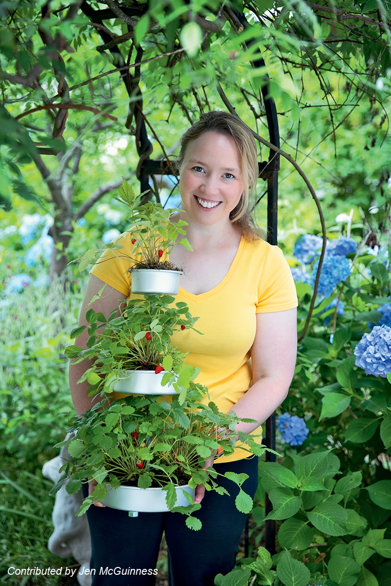 Jen McGuinness Micro Food Gardening with Alpine strawberries Central Texas Gardener