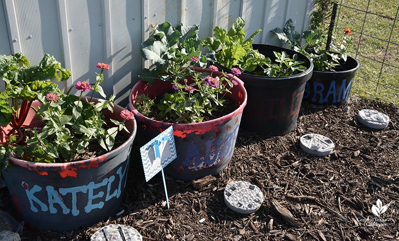 small container gardens for kids Bernsen garden Central Texas Gardener