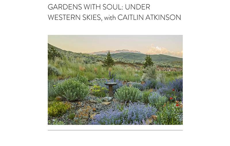 Caitlyn Atkinson interview with Jennifer Jewell, Cultivating Place