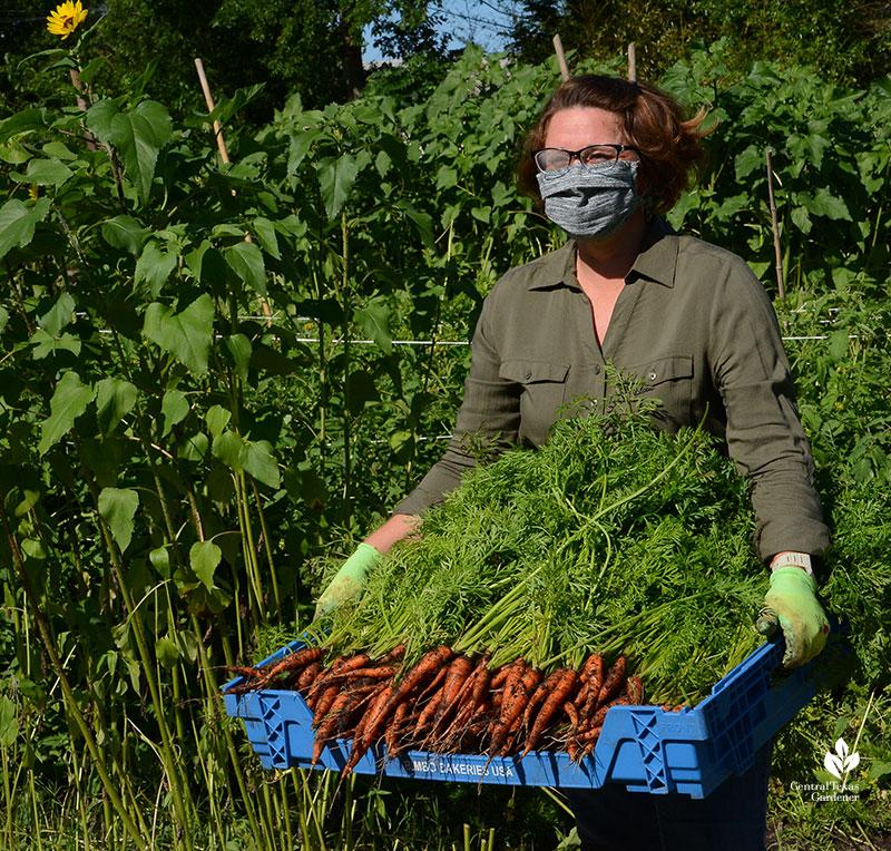 Lea Scott female farmer Este Garden with carrot harvest