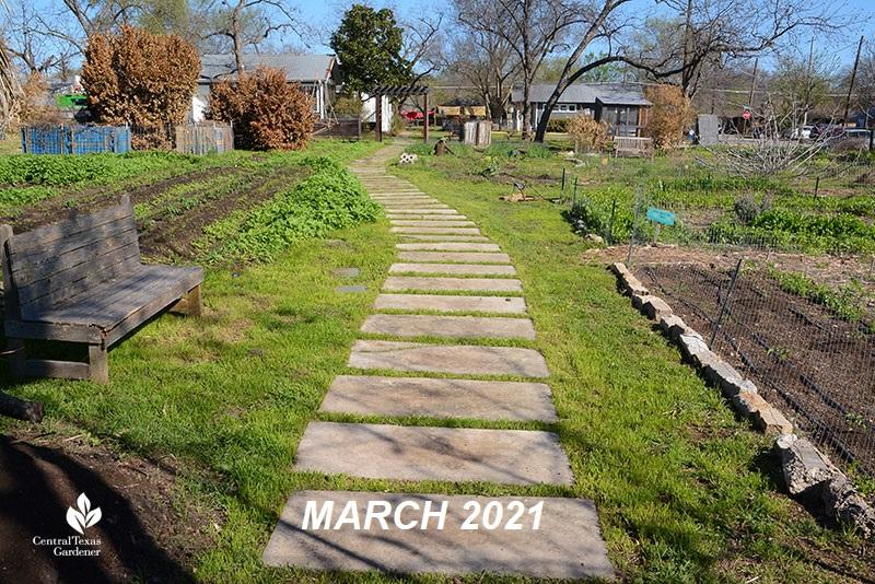 Este Garden main path to building March 2021