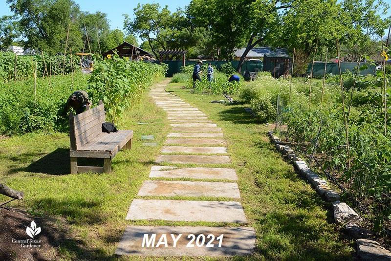 Este Garden main path to building May 2021