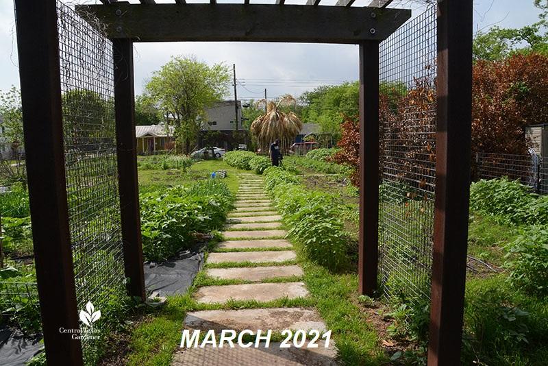 Este garden main path to street March 2021