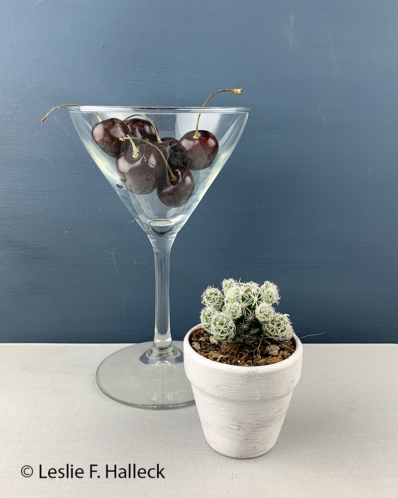 martini glass with cherries and thimble cactus in small container