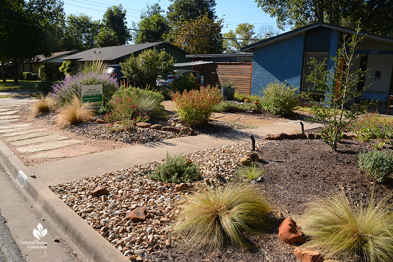 no lawn front yard with native plants