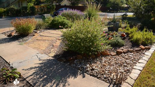 front yard island bed stone pathway native plants pavonia