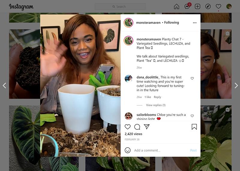 Chloe Phea Instagram page