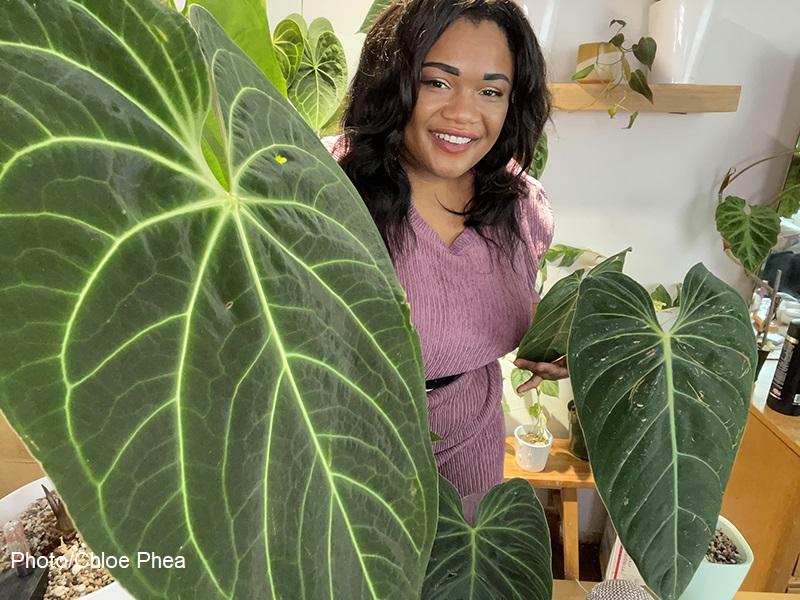 Chloe Phea with anthurium houseplant