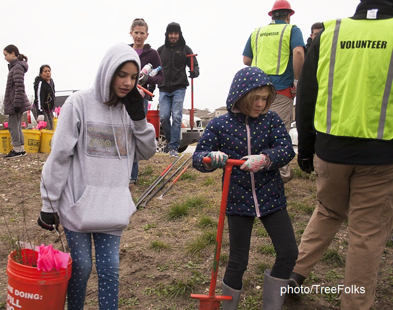 children and adults planting trees